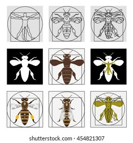 Set of vector vitruvian bees