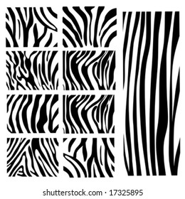 set of Vector zebra texture Black and White