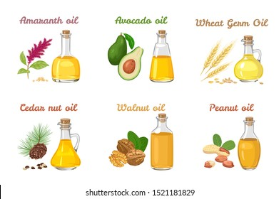 Set of vegetable oils in different glass bottles isolated on a white background. Wheat Germ Oil, Amaranth, Avocado, Cedar nut oil, Walnut and Peanut. Vector illustration of food in cartoon flat style.