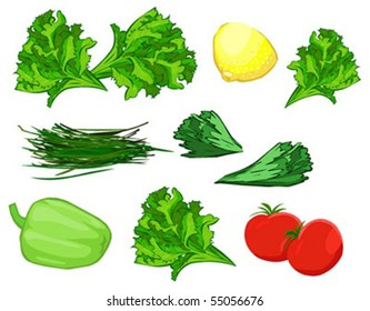 set of vegetables and condiments on white background