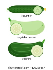 Set of vegetables: cucumber, marrow and zucchini, and their cross-sections