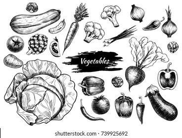Set of vegetables. Hand drawn. Vintage style