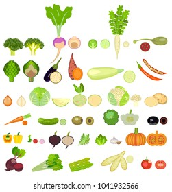 set of vegetables. thirty two  kinds of vegetables are whole and in a cut.Square of colored vegetables. Fresh food. Pumpkin, Cabbage, Blockley, kohlrabi, cauliflower, Brussels, beets, asparagus, corn
