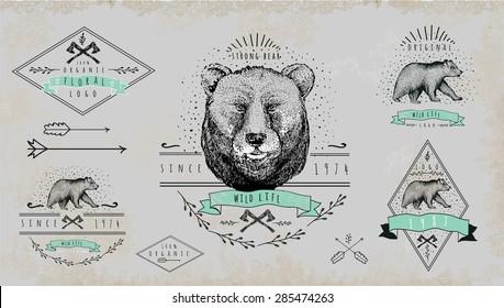 Set of vintage  bear logo. Design for t-shirt apparel print fashion design, graphic tee, vector illustration of bear on surfboard.