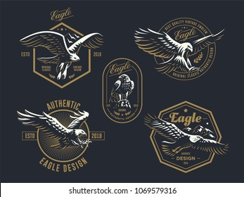 Set of the vintage emblem with the eagle