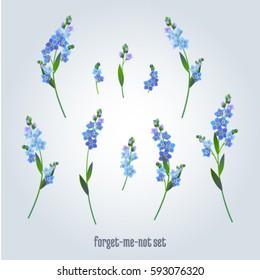 Set of vintage flowers elements. Collection of forget-me-not flowers on a light background. Vector illustration bundle.