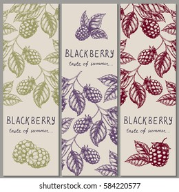 Set of vintage hand drawn blackberry raspberry vertical orientation banners. Vector illustration.
