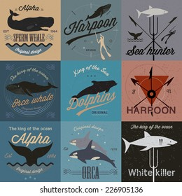 Set of vintage nautical labels, icons and design elements. Vector.