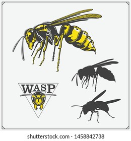 Set of Wasp labels, badges, icons and design elements. Dangerous stinging insects collection. Sport club emblems. Print design for t-shirt.