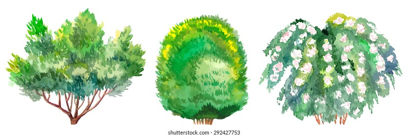 Set of watercolor bushes.