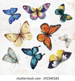 Set of  watercolor butterflies, vector illustration. Collection of hand drawing butterflies.