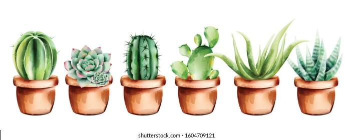 Set of watercolor cactus, aloe vera and flowers in ceramic pot
