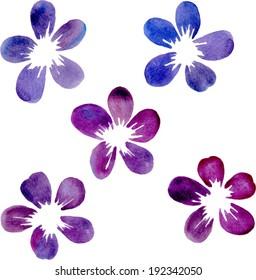 set of watercolor flowers, floral design element, hand drawn vector illustration