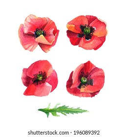 Set of watercolor flowers poppies