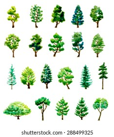 set of watercolor hand drawn different trees. vector illustration