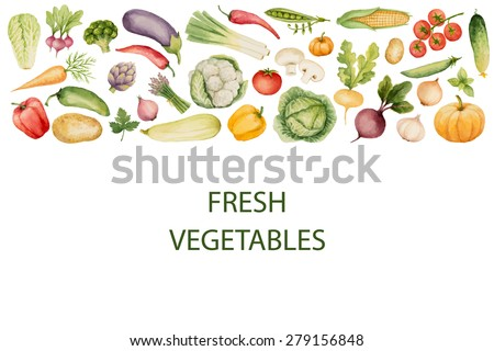 set watercolor vegetables template your design vector stock vector