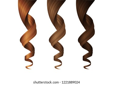Set of Wavy Hair Curls in Various Colors. Vector Realistic 3d Illustration. Design Element for Hairdressers, Beauty Salons, Hair Care Cosmetics, Shampoo, Conditioner or Hair Dye Packaging