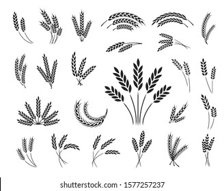 Set of wheat ear icons isolated on a white background, vector illustration.