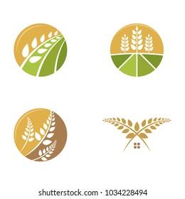 set of wheat logo template