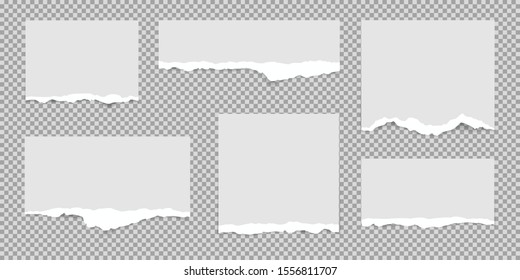 Set of white torn paper pieces, ripped paper, isolated on transparent background.