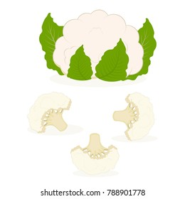 set of whole cauliflower and small pieces, background with cauliflower