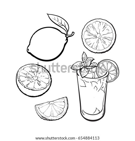 Set Whole Half Quarter Lime Glass Stock Vector Royalty Free