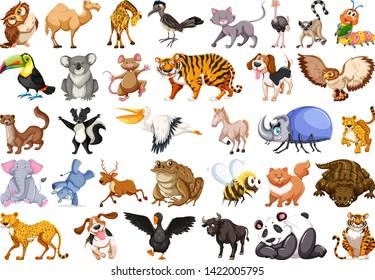 Set of wild animal illustration