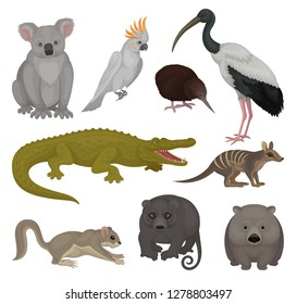 Set of wild Australian animals and birds. Fauna theme. Detailed vector elements for poster of zoo or children book