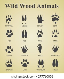 set of wild wood animal tracks