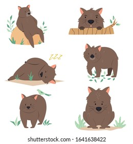 Set of wombats in different poses. Animal character design. Vector illustration