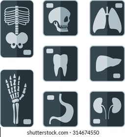 Set of X-rays flat icon