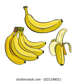 Set of Yellow Bananas. Vector color image