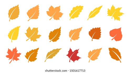 Set of yellow leaves. Autumn design element. Vector illustration