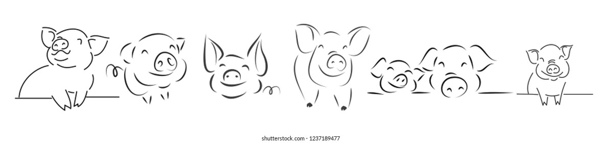 set-drawing of cute pig vector illustration simple concept zodiac of pig.