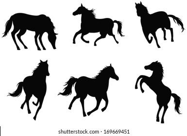 Sets of silhouette horses, in various actions, create by vector
