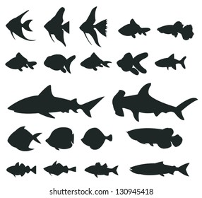 Sets of silhouette ocean sea fishes and shark and marine animal icon set 1, create by vector