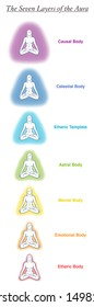 Seven aura bodies chart of a meditating yoga woman. Labeled chart - etheric, emotional, mental, astral, celestial and causal layer an template. Different rainbow colored auras. Vector white.