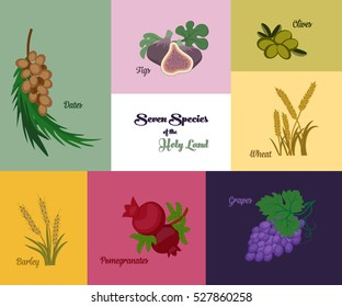 Seven species of the Holy Land, two grains and five fruits, Jewish holiday Shavuot, vector illustration