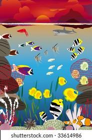 several fish swimming between coral reef at sunset