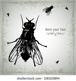 Several large black flies crawls on dirty background. Vector illustration. EPS 8.