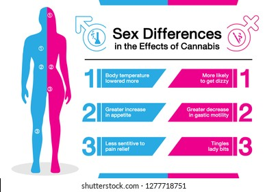 Sex differences in the effects of cannabis, hemp, marijuana effect on body male or female. vector infographic on white background.