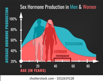 Sex hormone production in men and women. Average percentage from the birth to the age of eighty years. Beautiful vector illustration. Medical infographic useful for an educational poster design.
