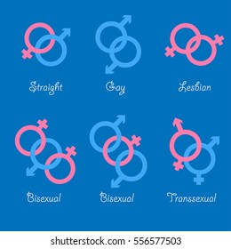 Sexual orientation vector icons. Sexual gender orientation, heterosexual and bisexual opinions. Straight, gay, lesbian, bisexual and transgender icons.