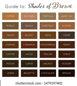 Shades of brown - vector brown color palette guide