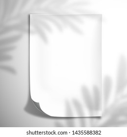 The shadow of a palm leaf falls on a white blank concave sheet of paper.  Top view mockup template for design