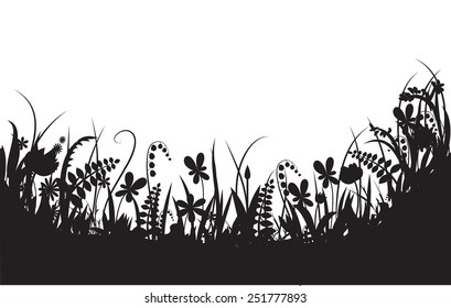 shadows flowers, summer time, vector, black and white,