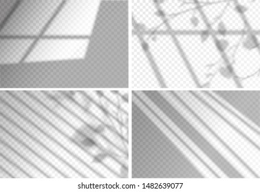 Shadows overlay effects transparent set for presentation. Horizontal format mockups. Scenes of natural lighting. Realistic vector illustration. Leaves and window frames monochrome overlays shadow
