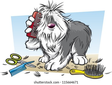 Shaggy dog brushing his fur