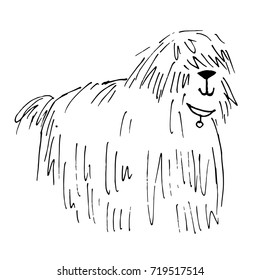 Shaggy dog vector hand drawn illustration