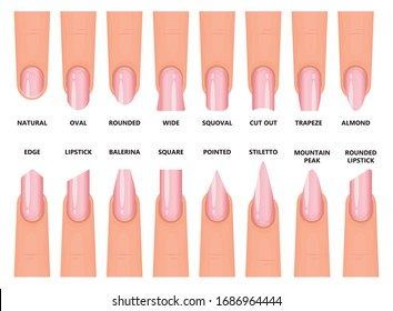 Shape nail vector illustration on white background. Isolated cartoon set icon fingernail. Vector cartoon set icon shape nail.